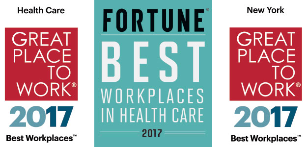 Great Place to Work Badges 2017