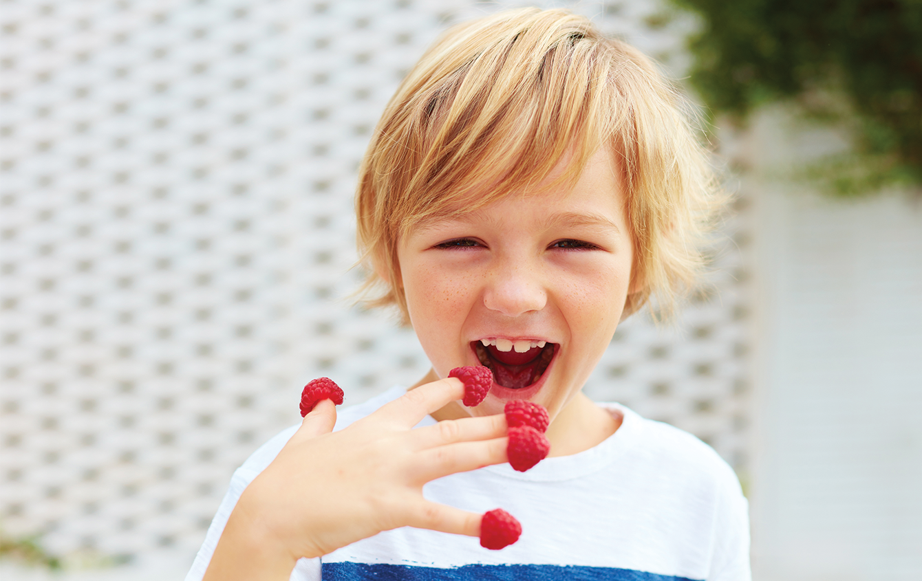Handling Your Picky Eaters – New Approaches for Kids Who Won't Eat